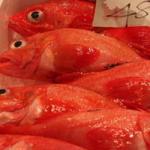 Tsukiji, marché aux poissons