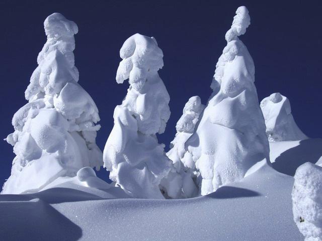 snow_monster_7