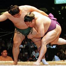 sumo-thumb