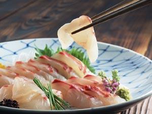 sashimi6
